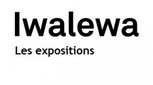 Iwalewa les expositions